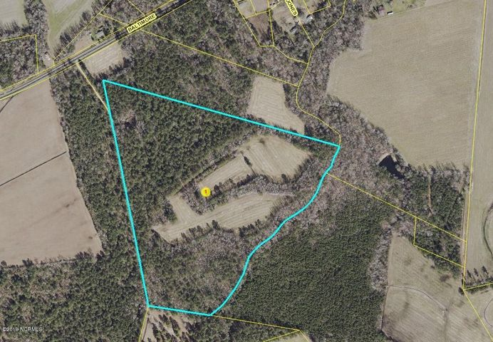 0 Off Baltimore Road, Council, NC 28434
