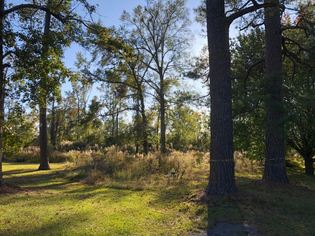 Beautiful 22 +- acre tract for sale in rural Onslow County. Land is partially cleared and has approximately 300 feet of road frontage on White Oak River Road. Great for someone with horses. Possible uses include residential, recreational or for agriculture use. Call today for more information.