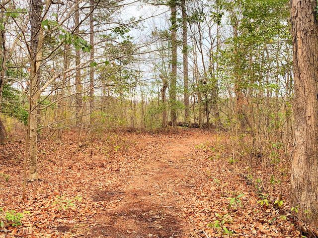 Waterfront! This 1.22 acre lot sits approximately 28 feet above the New River with beautiful views in all directions. Come build your dream home on this exceptional waterfront parcel.  There's no finer waterfront lot in Onslow County. Great views, deep water, and privacy combined.