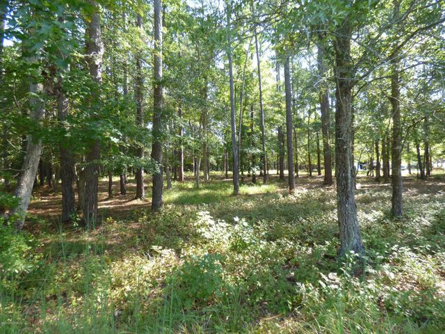 Over 3/4 acre in beautiful Swans Bluff, just outside Swansboro. Nicely wooded and surrounded by custom homes.  Current septic tank permit on file for 3 bedroom 2 bath home. Right down the street is the subdivision's waterfront park with gazebo and day dock. Also nearby - shopping and schools, Hammocks Beach State Park and the beaches of Emerald Isle. Easy commute to Camp Lejeune/Jacksonville. An excellent location for your new year-round or vacation home!