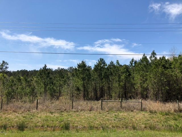 Great visibility with road frontage on US 17!  6 +/- acres for sale near Maysville.  Three adjoining parcels make up this offering.  Ideal for your home or business.  Call for more information today!