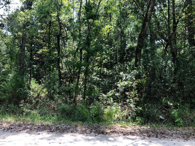 Over one acre of land for sale!  Located on Old Tar Landing Rd, outside the Jacksonville city limits so there are no city taxes to pay.  Easy access to Hwy 24 and just about two miles from Wal-Mart.  Call for more information today!