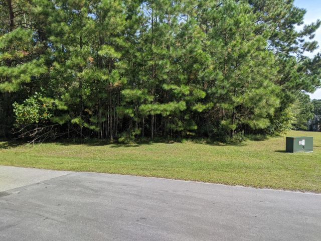 Beautiful water view building lot in the desirable White Oak Crossing subdivision. Build your dream home overlooking the White Oak River and enjoy all that Swansboro has to offer! Drop your boat in at the community boat ramp and cruise down to the intra coastal waterway and enjoy the pristine beaches and fishing in the area. Neighborhood also has a community pool and storage lot.