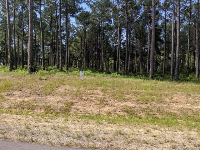 Beautiful, large building lot in a great new water access subdivision in growing area of Holly Ridge.  Loggerhead Bay at Topsail Bluff is conveniently located for easy access to Camp LeJeune back gate, within walking distance to new Coastal  elementary school, shopping, amenities and our beautiful Topsail beaches. Outside of heavy traffic in a quite wooded area. The community boat ramp with private and day docks, access to Turkey Creek, ICW and out to the ocean for boating and fishing. Lots of trees on high building site  This property has a walk down to the marsh front on Turkey Creek and water views. Expired septic permit can be renewed with the county. Enjoy the bald eagles, wild turkeys and deer. Don't miss this opportunity to be a part of this neighborhood of new homes. Motivated seller!