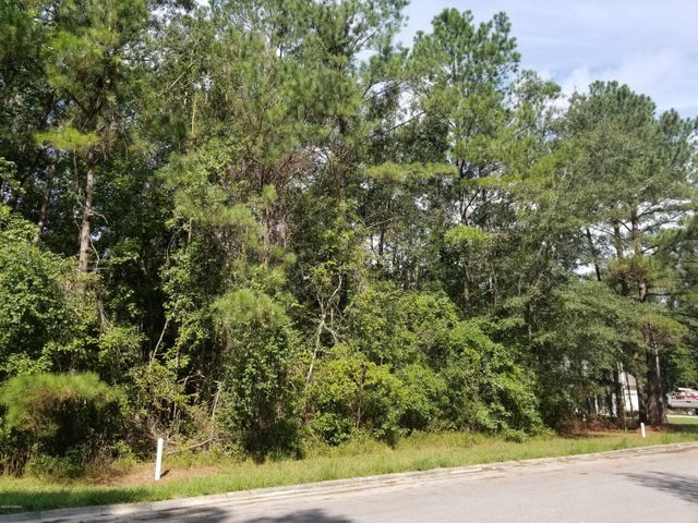 Looking for a build-able lot in a quiet neighborhood? This wooded lot is located 10-15 minutes from New River Air Station and ready to build on.  Not in the city limits and NO SEPTIC system! Sewer connections are ready to go! 4 additional lots are available.