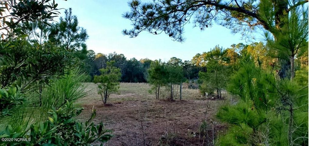 Check out this beautiful secluded lot that has the feel of country living while still being in close proximity to everything the greater Topsail area has to offer.  It is located 10 minutes from gorgeous beaches, fabulous waterways, boat launches, spacious parks, pristine hiking trails, great restaurants, schools, libraries, shopping and more.  At nearly four acres, this cleared lot is surrounded by peaceful woodlands and is at the end of a picturesque lane.