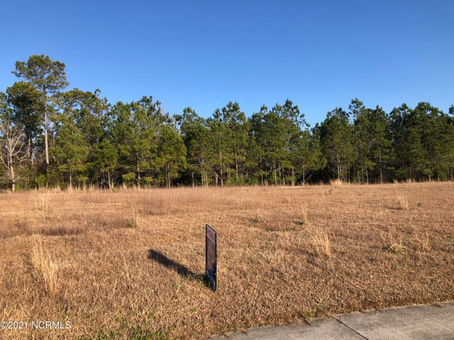 Beautiful residential building lot for sale in the premiere neighborhood of Halls Creek North. Just minutes from historic downtown Swansboro and the waterfront. Call today for more information.