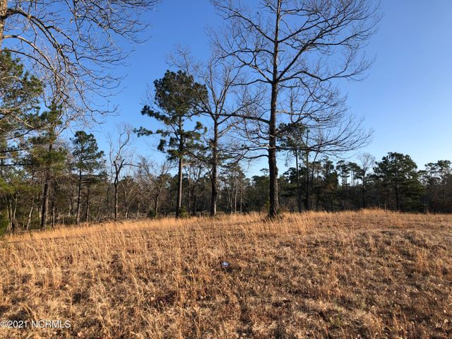 Over two acres in Swansboro! This large residential building lot is located in the neighborhood of Halls Creek North where you are close to local schools, historic downtown Swansboro and Hammocks Beach State Park. Lot has frontage on the marsh and creek. Call for more information today!