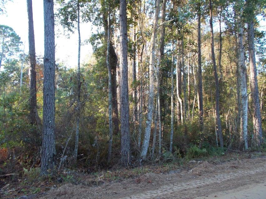 146 MARION, FLORAHOME, FLORIDA 32140, ,Vacant land,For sale,MARION,615792