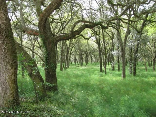 00 RTE 17 & KIRKWOOD- POMONA PARK- FLORIDA 32181, ,Vacant land,For sale,RTE 17 & KIRKWOOD,710534