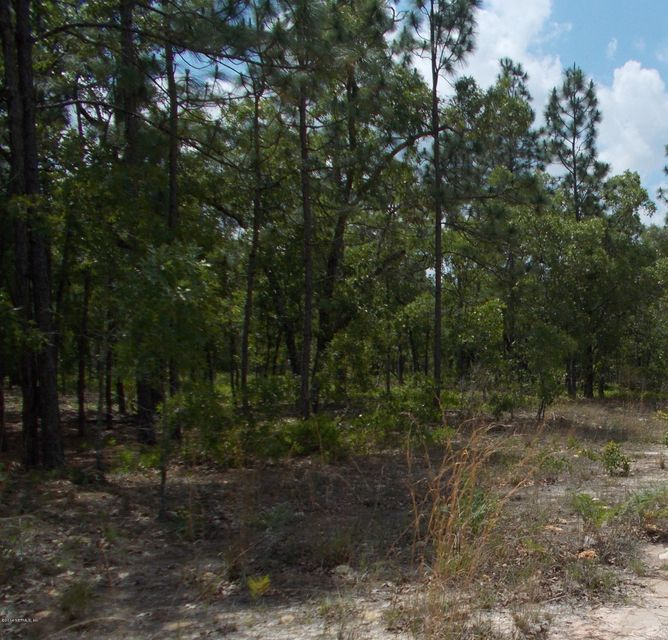 7153 RUTGERS, KEYSTONE HEIGHTS, FLORIDA 32656, ,Vacant land,For sale,RUTGERS,717250