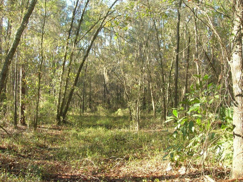 21707 115TH, EARLTON, FLORIDA 32631, ,Vacant land,For sale,115TH,724710