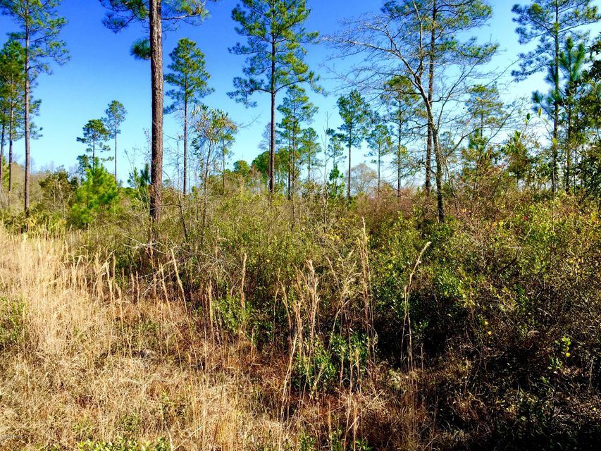 MAXVILLE, JACKSONVILLE, FLORIDA 32234, ,Vacant land,For sale,MAXVILLE,805065