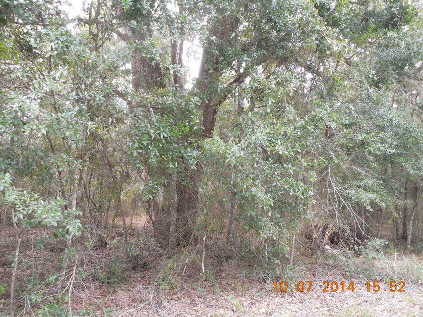 00 COUNTY ROAD 219-A, MELROSE, FLORIDA 32666, ,Vacant land,For sale,COUNTY ROAD 219-A,780135