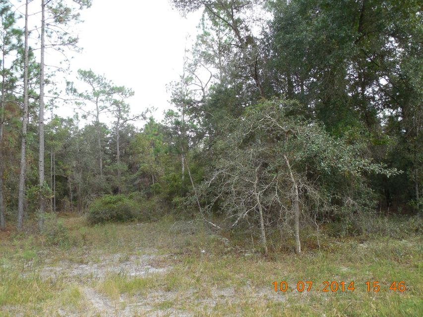 00 COUNTY ROAD 219-A, MELROSE, FLORIDA 32666, ,Vacant land,For sale,COUNTY ROAD 219-A,780143