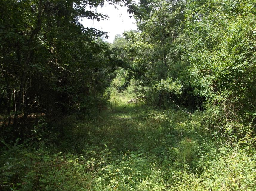 4009 SCENIC- MIDDLEBURG- FLORIDA 32068, ,Vacant land,For sale,SCENIC,752175