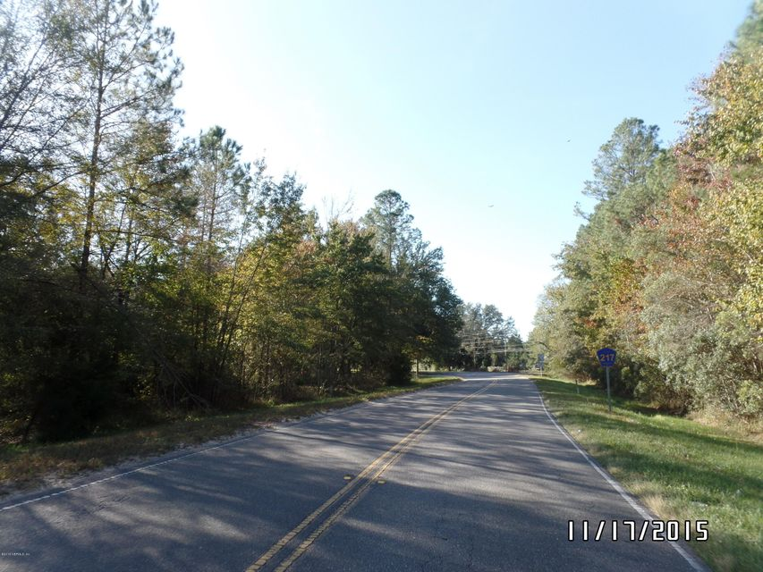 00 CR-217, MAXVILLE, FLORIDA 32234, ,Vacant land,For sale,CR-217,801843