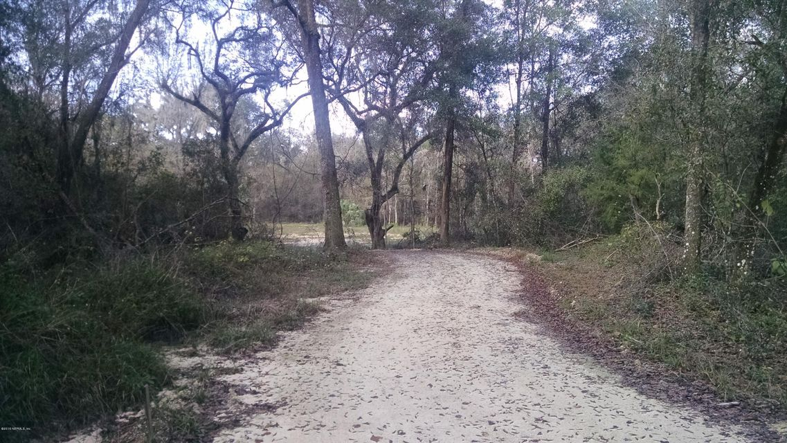 11- TRENTON- FLORIDA 32693, ,Vacant land,For sale,11,808103