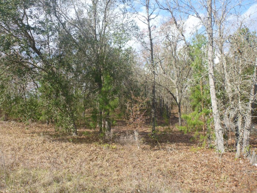 00 41ST, KEYSTONE HEIGHTS, FLORIDA 32656, ,Vacant land,For sale,41ST,811318