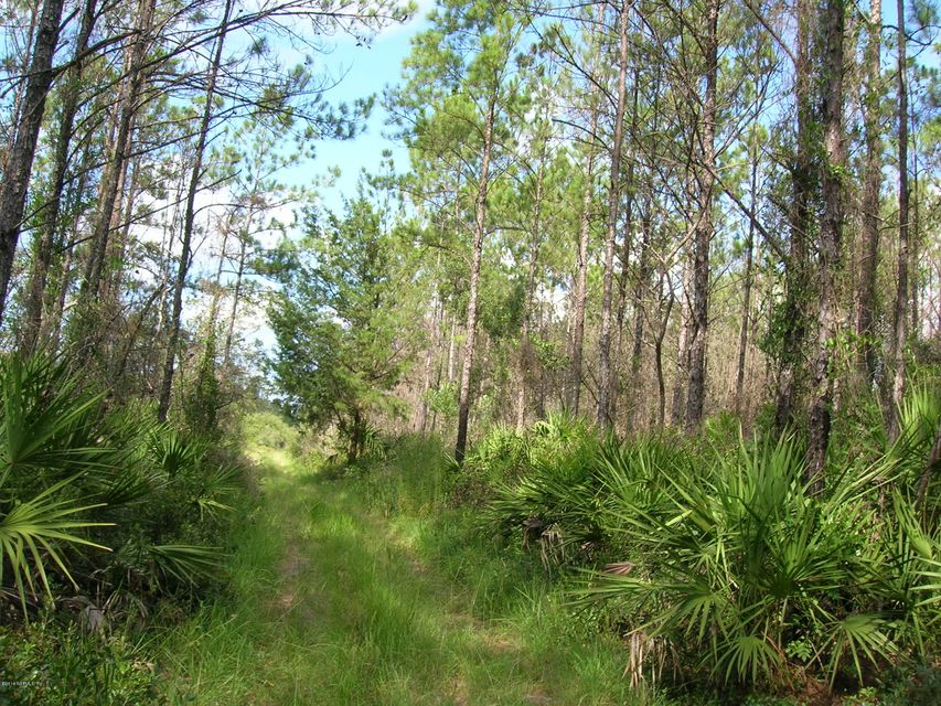 00 EASEMENT, CEDAR KEY, FLORIDA 32625, ,Vacant land,For sale,EASEMENT,828853