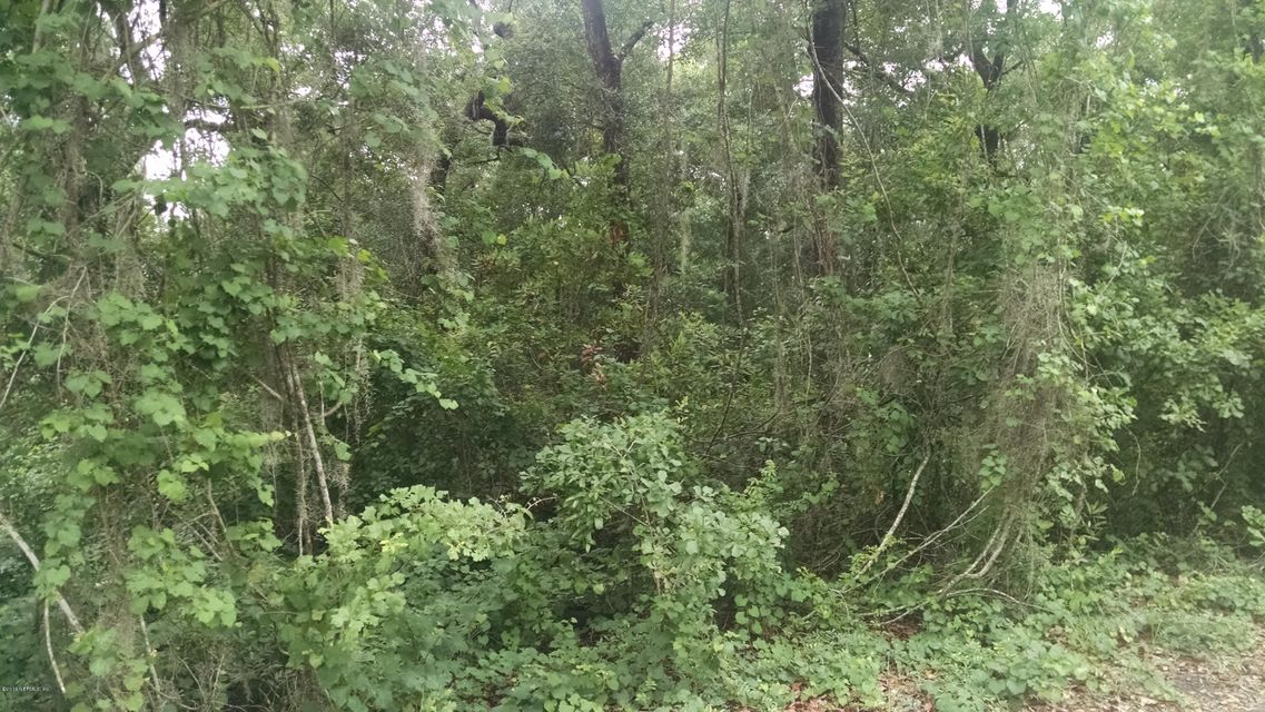 HONEYDEW- MELROSE- FLORIDA 32666, ,Vacant land,For sale,HONEYDEW,832959