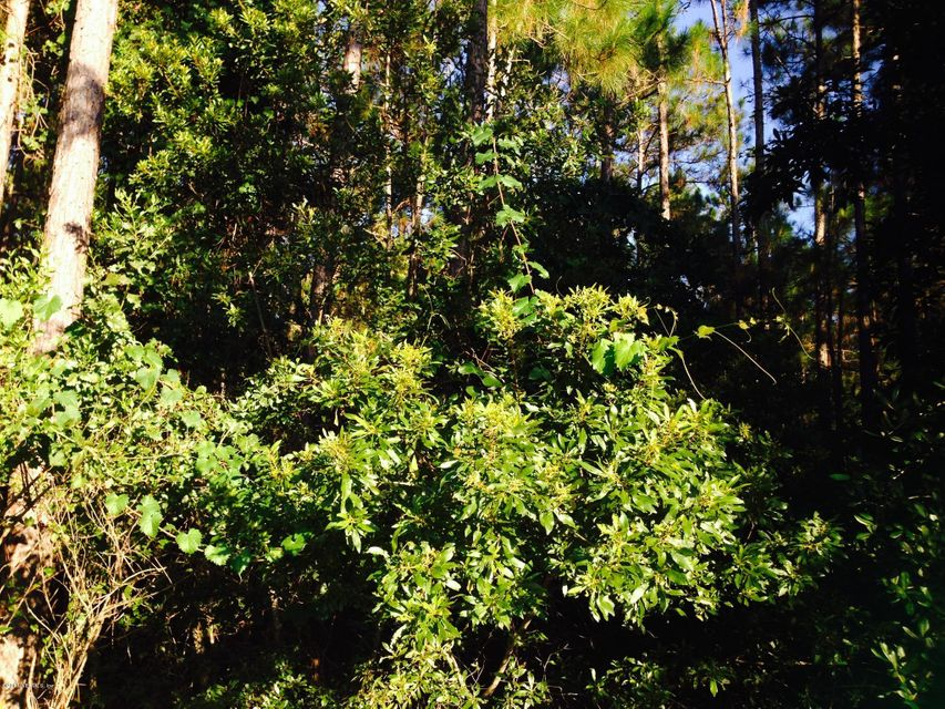10877 MC LAURIN, JACKSONVILLE, FLORIDA 32256, ,Vacant land,For sale,MC LAURIN,696241
