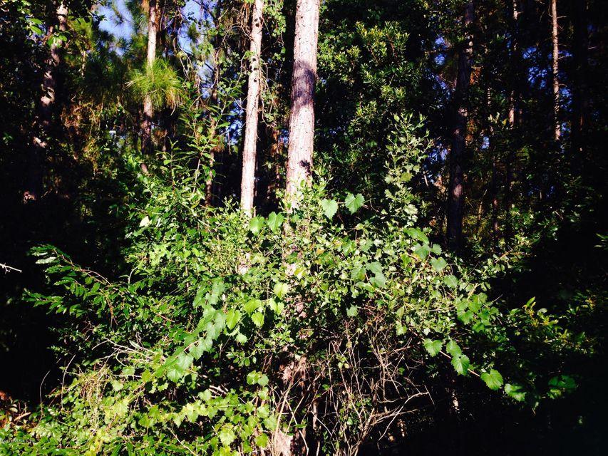 0000 CYPRESS LAKES, JACKSONVILLE, FLORIDA 32256, ,Vacant land,For sale,CYPRESS LAKES,670106