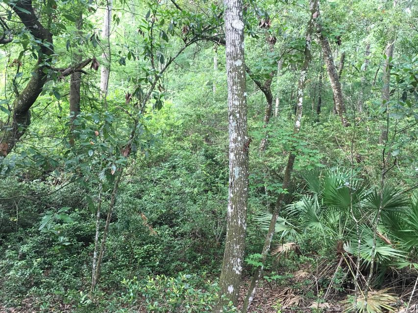 00 PARCEL A, MIDDLEBURG, FLORIDA 32068, ,Vacant land,For sale,PARCEL A,861801