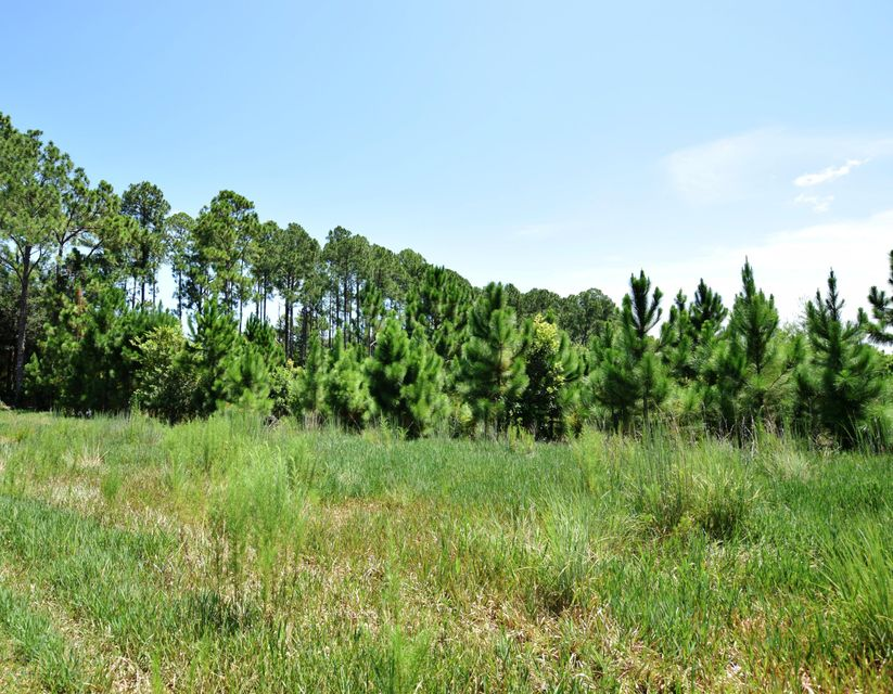 000 SHORESIDE, CRESCENT CITY, FLORIDA 32112, ,Vacant land,For sale,SHORESIDE,840206