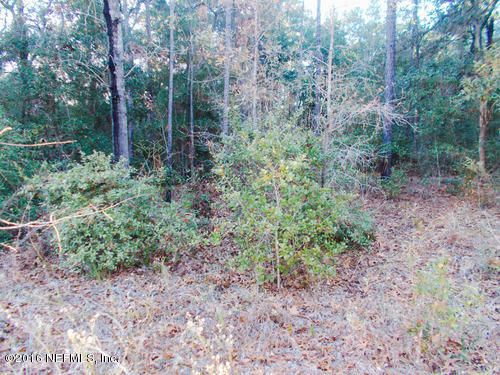4534 ALAN LAKE, KEYSTONE HEIGHTS, FLORIDA 32656, ,Vacant land,For sale,ALAN LAKE,613455