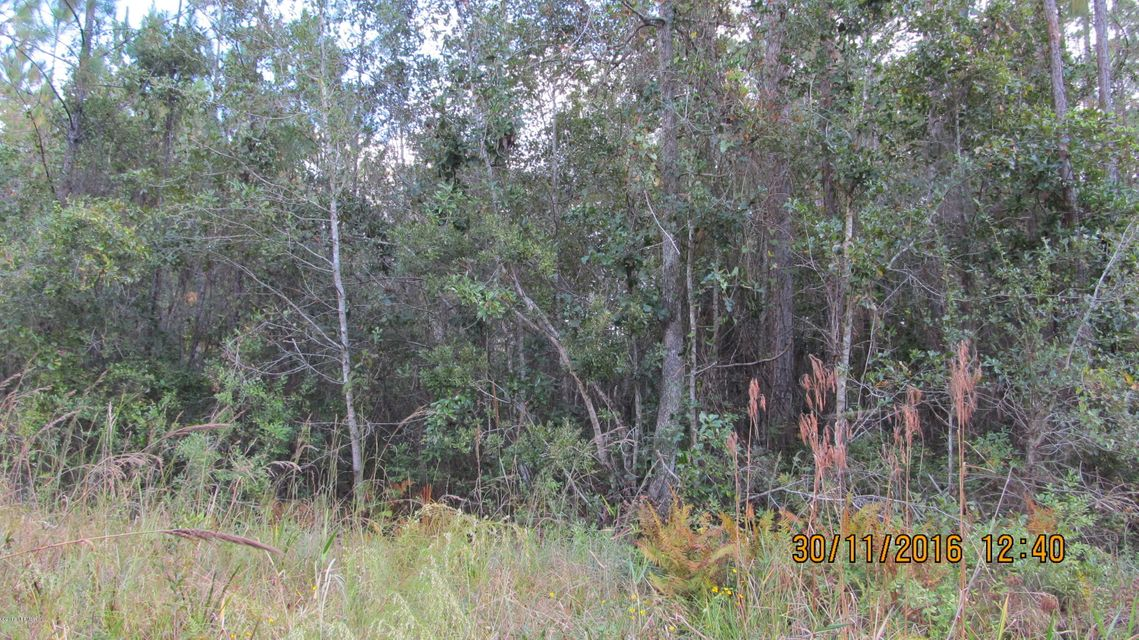 SILVER MOSS- MIDDLEBURG- FLORIDA 32068, ,Vacant land,For sale,SILVER MOSS,853261