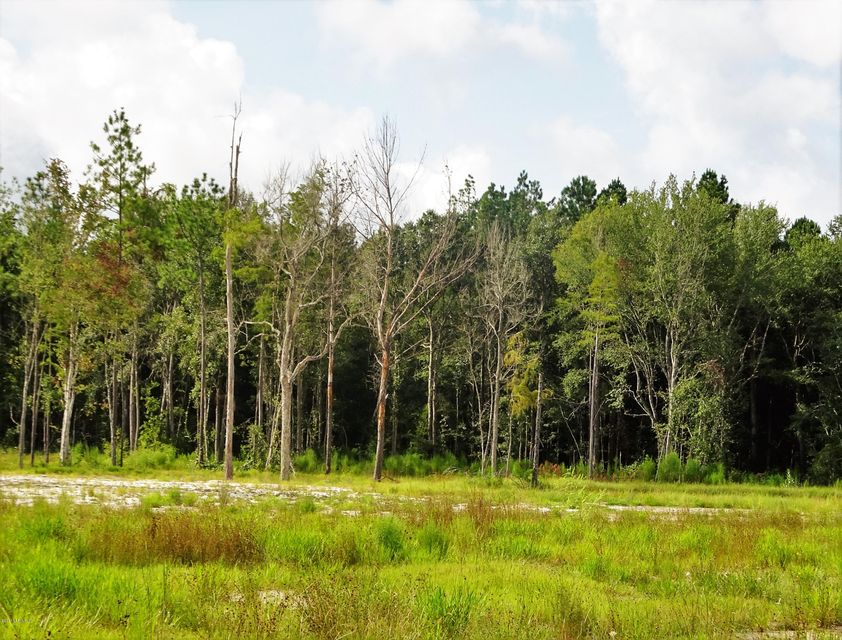 FOREST TRAIL, JACKSONVILLE, FLORIDA 32234, ,Vacant land,For sale,FOREST TRAIL,854513