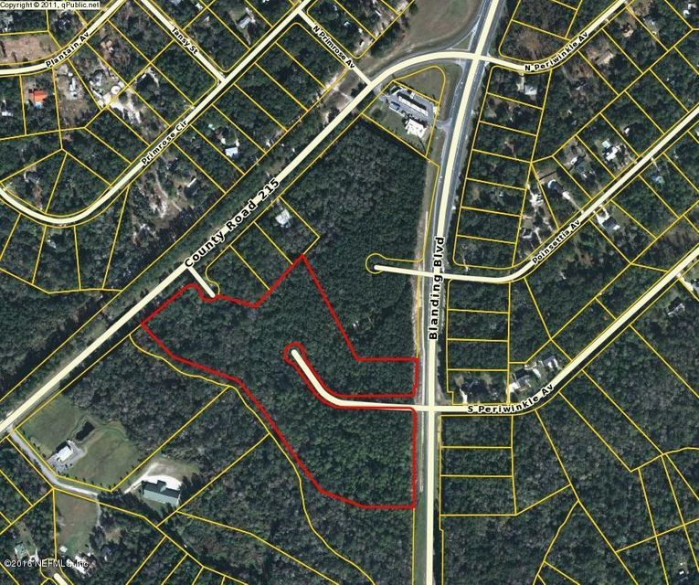 BLANDING, MIDDLEBURG, FLORIDA 32068, ,Vacant land,For sale,BLANDING,858328