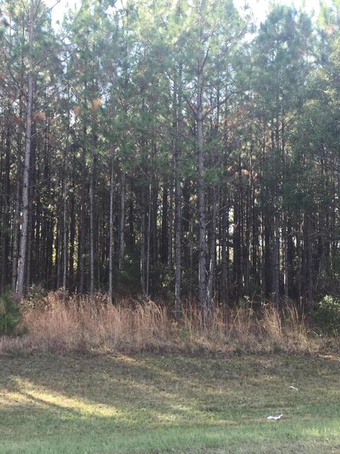225, LAWTEY, FLORIDA 32058, ,Vacant land,For sale,225,858154
