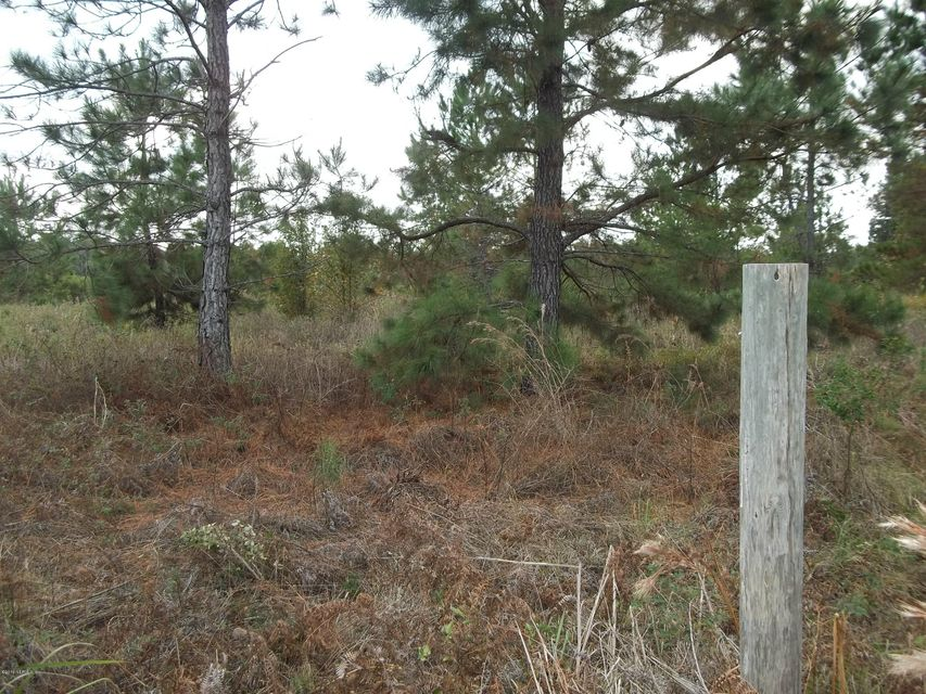 BAOBAB, INTERLACHEN, FLORIDA 32148, ,Vacant land,For sale,BAOBAB,858037