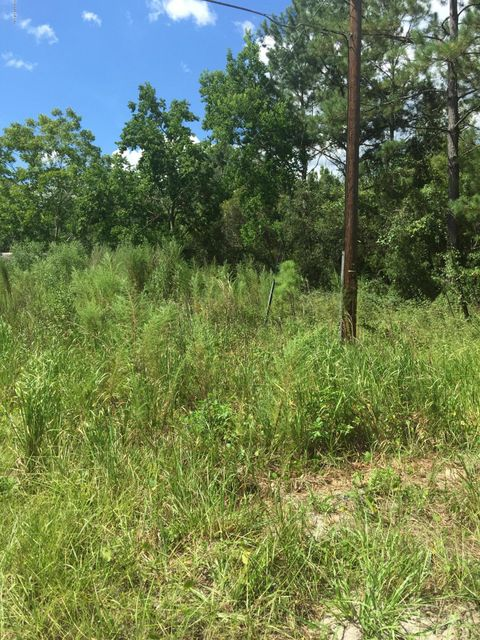 22212 41ST- LAWTEY- FLORIDA 32058, ,Vacant land,For sale,41ST,860133