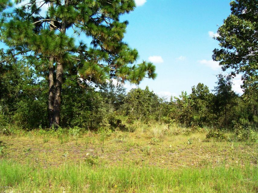 7681 WHITE SANDS, KEYSTONE HEIGHTS, FLORIDA 32656, ,Vacant land,For sale,WHITE SANDS,860199