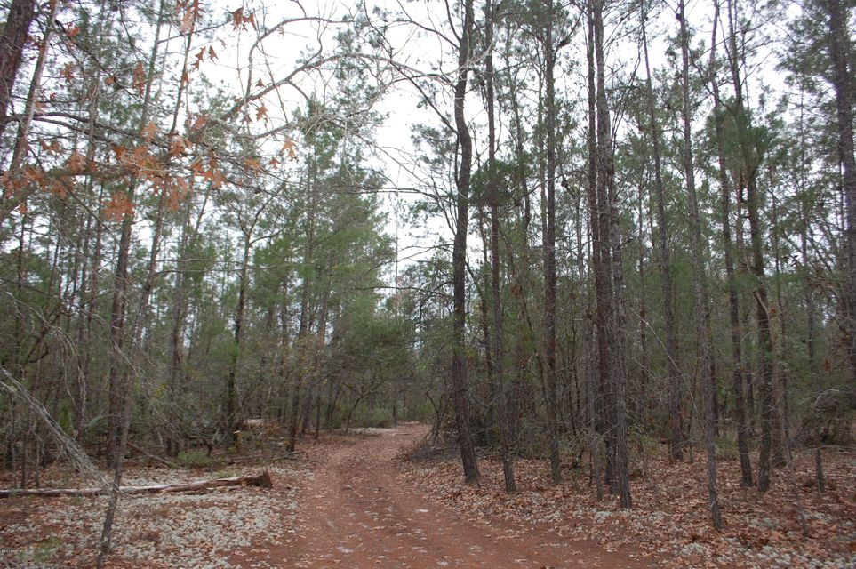 848 COUNTY RD 21- HAWTHORNE- FLORIDA 32640, ,Vacant land,For sale,COUNTY RD 21,867588