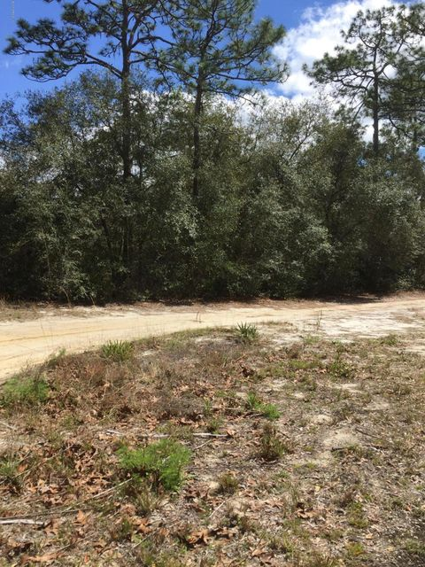 683 COUNTY RD 21, HAWTHORNE, FLORIDA 32640, ,Vacant land,For sale,COUNTY RD 21,872222