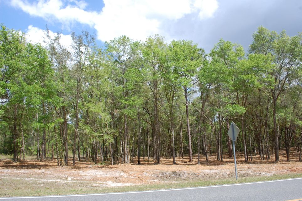 LOT # 1 21B / SE 8TH- KEYSTONE HEIGHTS- FLORIDA 32656, ,Vacant land,For sale,21B / SE 8TH,873602