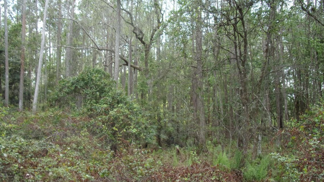 151 FAWN, PALATKA, FLORIDA 32177, ,Vacant land,For sale,FAWN,874832