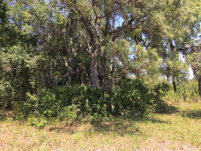 261 TURNER- EAST PALATKA- FLORIDA 32131, ,Vacant land,For sale,TURNER,883429
