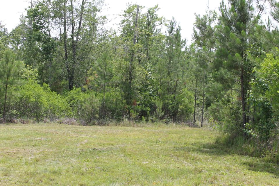 3906 CR 218, MIDDLEBURG, FLORIDA 32068, ,Vacant land,For sale,CR 218,865945