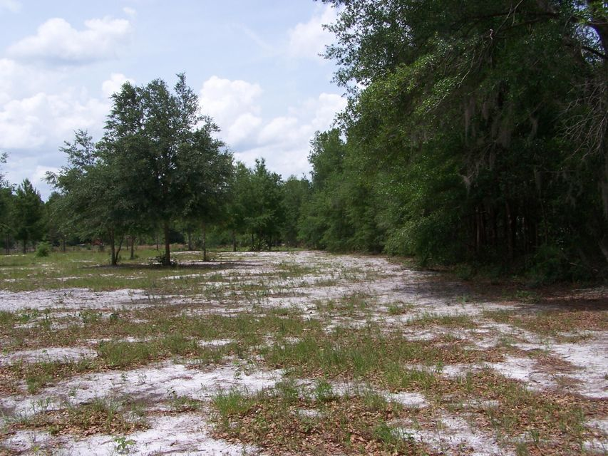 00 PEACEFUL, PALATKA, FLORIDA 32177, ,Vacant land,For sale,PEACEFUL,885069