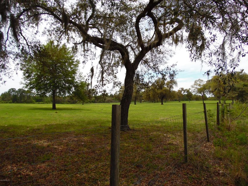 CR 308, CRESCENT CITY, FLORIDA 32181, ,Vacant land,For sale,CR 308,886020
