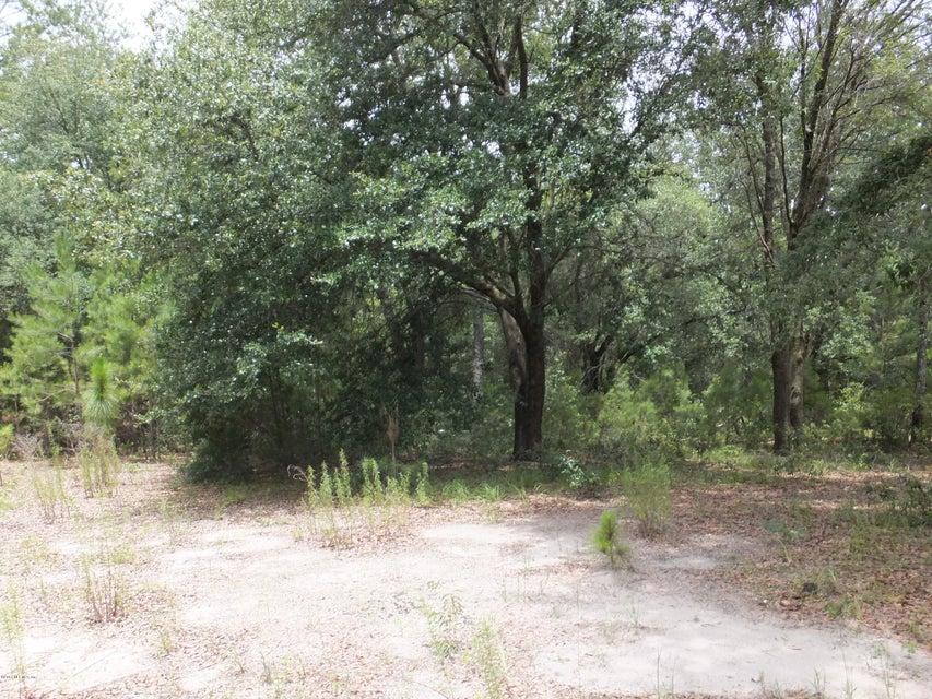JOEL, FLORAHOME, FLORIDA 32140, ,Vacant land,For sale,JOEL,887865