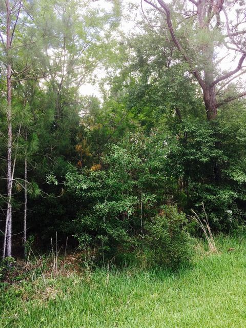 200TH, STARKE, FLORIDA 32091, ,Vacant land,For sale,200TH,888844