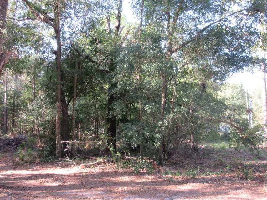 000 51ST- KEYSTONE HEIGHTS- FLORIDA 32656, ,Vacant land,For sale,51ST,891552