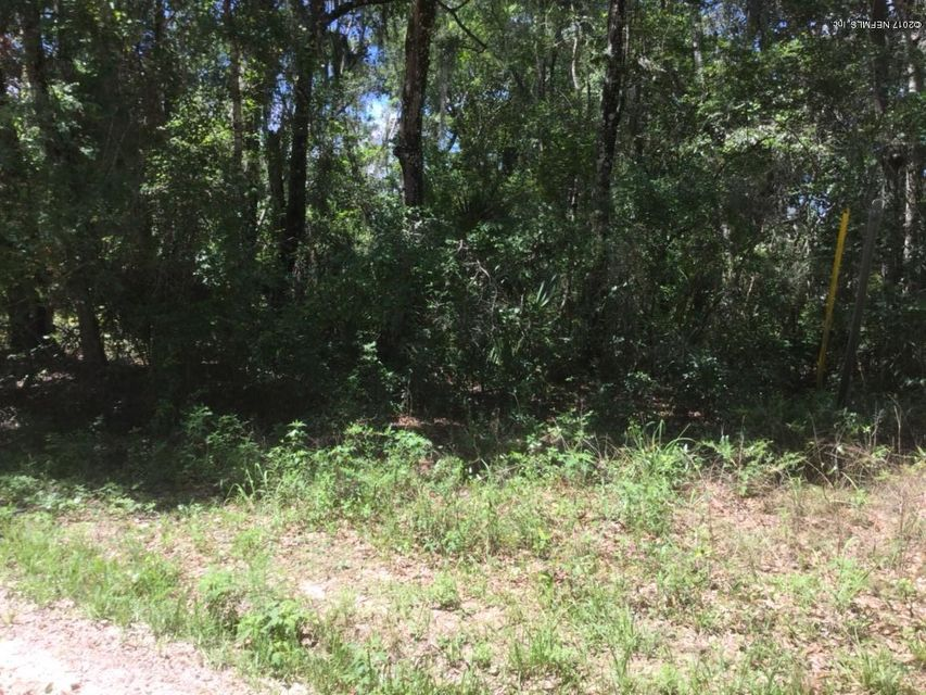 305 GIBBS- SATSUMA- FLORIDA 32189, ,Vacant land,For sale,GIBBS,881394
