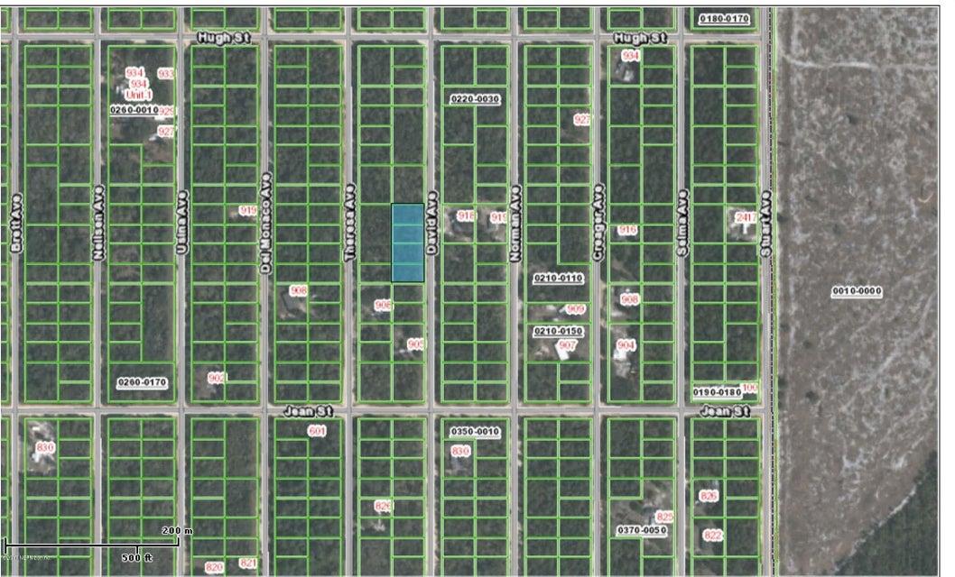 915 DAVID- INTERLACHEN- FLORIDA 32148, ,Vacant land,For sale,DAVID,894682